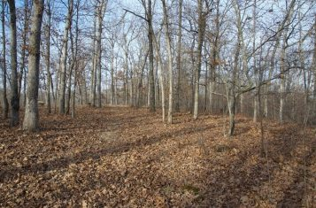 Secluded Hunting or Residential Land for Sale in Missouri