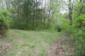 30.82 Acre Missouri Recreational Property for Sale – Pike County