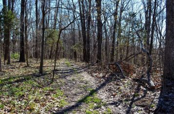 Private Timber Ground Acreage for Sale in Jefferson County Missouri