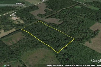 Secluded Deer Hunting Tract for Sale in Illinois