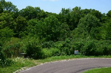 Lot #29 Bryant's Creek Subdivision Vacant Building Lot for Sale
