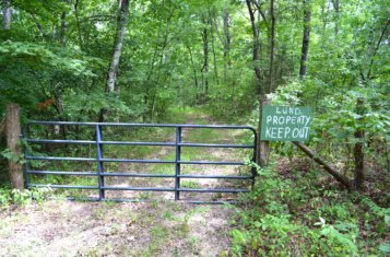 281 +/- Acre Recreational Paradise on The Big River for Sale in St. Francois County Missouri