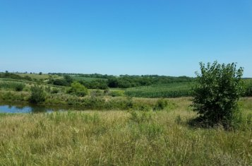 Mercer County Missouri Hunting Farm with Income for Sale