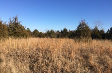 Williamson County Illinois 277 +/- Acre Recreational Land for Sale