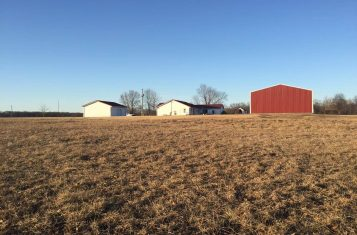 Iuka Illinois Country Home with 20 +/- Acres for Sale