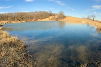 153 +/- acres in Pike County MO for Sale with Lake, Tillable Income, and Excellent Hunting