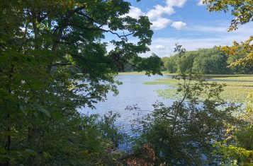 10 +/- Acre Property for Sale with 50 +/- Acre Lake – Clay County Illinois