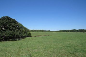 56.3 Acres for Sale in Fulton Missouri – Callaway County