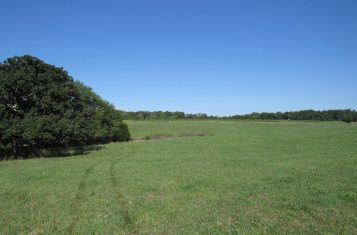 52 +/- Acres for Sale in Fulton Missouri – Callaway County
