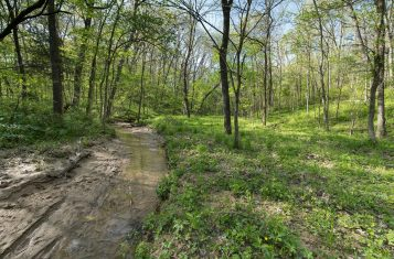 102 +/- Acre Illinois Recreational Hunting Farm for Sale – Schuyler County