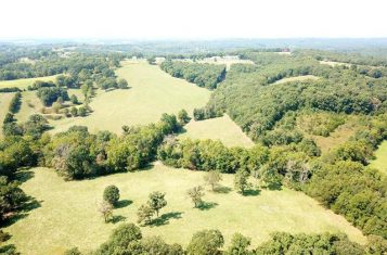 64 +/- Acre Missouri Oasis for Sale – Osage County