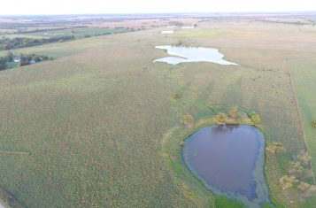 97.60 +/- Acre Kansas Waterfowl Hunting & Pasture Land for Sale – Butler County