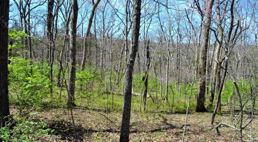 Vacant land for sale Missouri