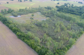 41 +/- Acre Northern Missouri Waterfowl Hunting Property for Sale – Chariton County