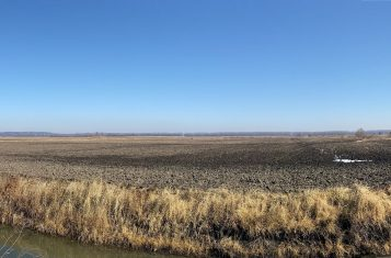 203.5 +/- Acres Illinois Highly Tillable Hunting Ground for Sale – Pike County