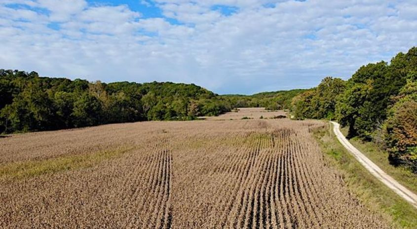 Pike County IL land iAuction
