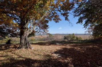 15+ Acres Overlooking The Mississippi River Bluffs, Lincoln County, MO