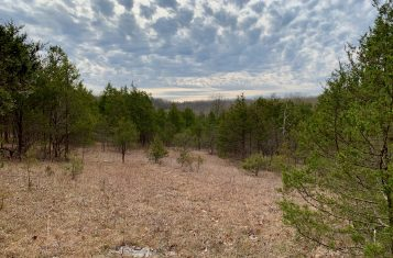 41+/- Acres Hunting & Recreational Property in Hillsboro, MO