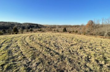 Tract 5.1-17 Acres – Vacant Land With Building Sites Near Eolia, MO For Sale