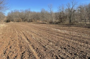 Secluded 90 +/- Acre Big Buck Hunting Tract For Sale – Lincoln County