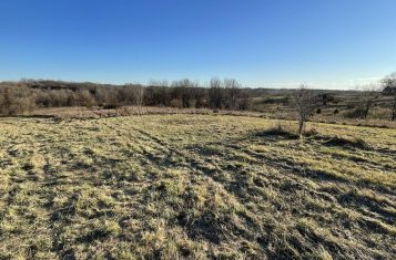 Tract 3.2-16 Acres – Vacant Land With Building Sites Near Eolia, MO For Sale
