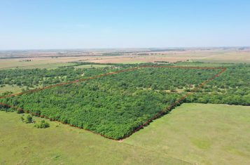 81.4± Acre Sumner County Kansas Hunting Property for Sale